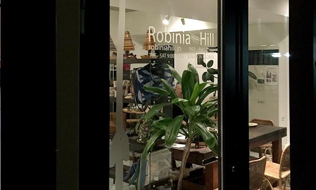RobiniaHill